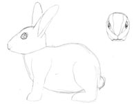 a simple drawing of a rabbit